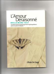 My front book cover- L'Amour Deraisonne