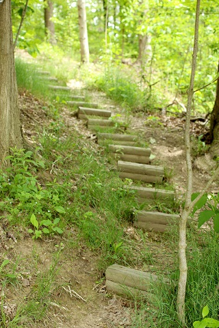 path to possibility