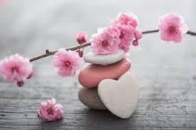 vivre zen